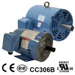 World Wide Electric Motors, Open Drip Proof, Three-Phase Rigid Base