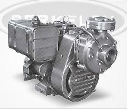 B58603s Berkeley Type B High Pressure Air Cooled Pump