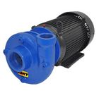 AMT Heavy Duty Straight Centrifugal Pumps