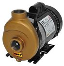 AMT Bronze Inline Centrifugal Pumps