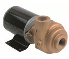 AMT Bronze Marine Pumps