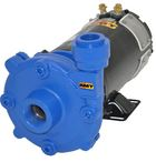 AMT 12 Volt DC High Head Washdown Pumps
