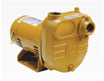 Effluent Self-Priming Pumps